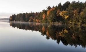 Autumn colors in Algonquin Lake Muskoka Ontario