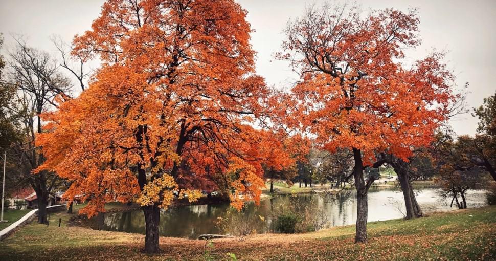Autumn near Troost Lake in Kansas City