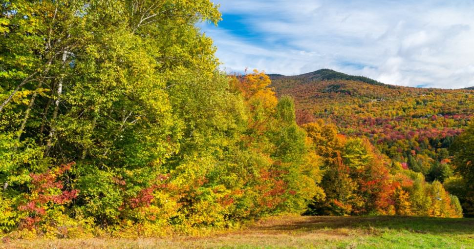 Stunning colors of Vermont foliage New England