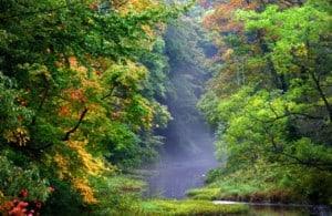 beautiful trees in Scenic autumn landscape in Ashtabula county in Ohio state