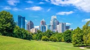 Trees in Midtown Atlanta skyline from the park