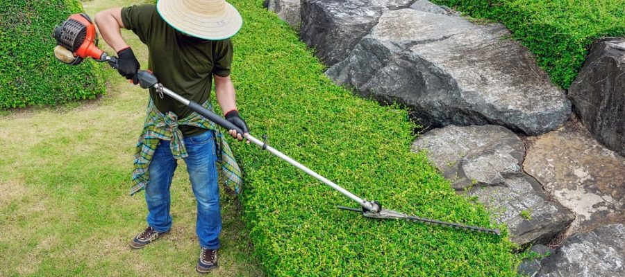 Long-reach-hedge-trimmer