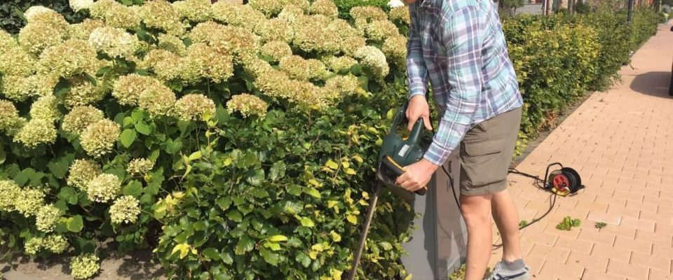 best corded electric hedge trimmers