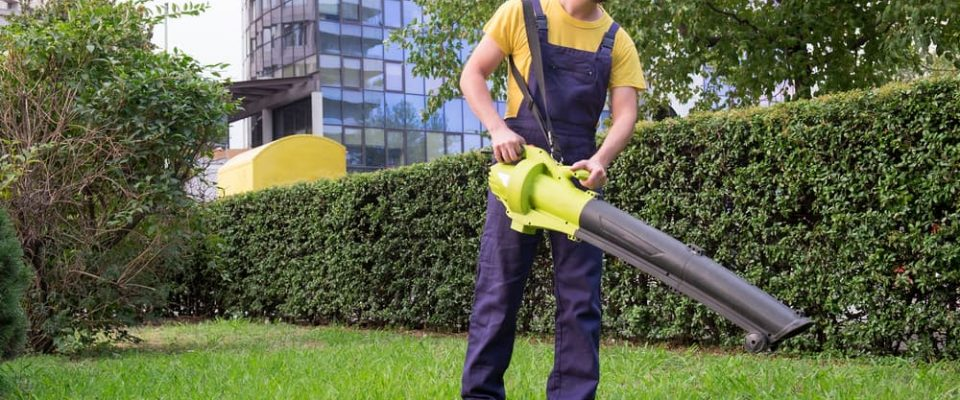 The 5 Best Cordless Leaf Blowers Battery Powered 2018 ProGardenTips