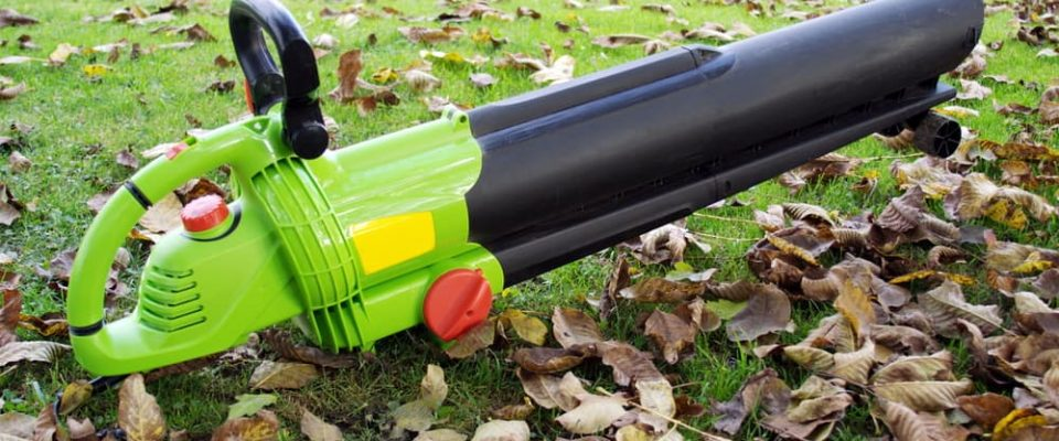 Best cordless battery powered leaf blower buying guide