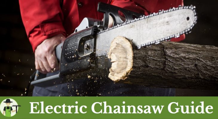 Best electric chainsaw reviews and buying guide progardentips best electric chainsaw reviews keyboard keysfo Choice Image