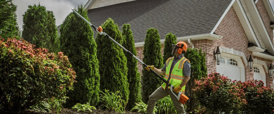 Best pole hedge trimmer